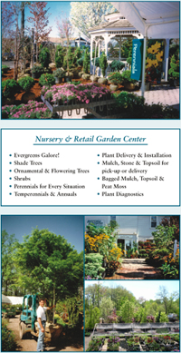 Nursery and Garden Center, Landscape design, Garden design, Gardening, Gardens, Garden Plants, Planting, Pruning, Shrubs, Plants, Flowers, Annuals, Perennials, shade loving plants, deer resistant plants, Flowering trees, trees, shade trees, Nursery stock, plant materials, swimming pools, plant descriptions, Landscape privacy plants, Landscape master plan, Landscape lighting installer