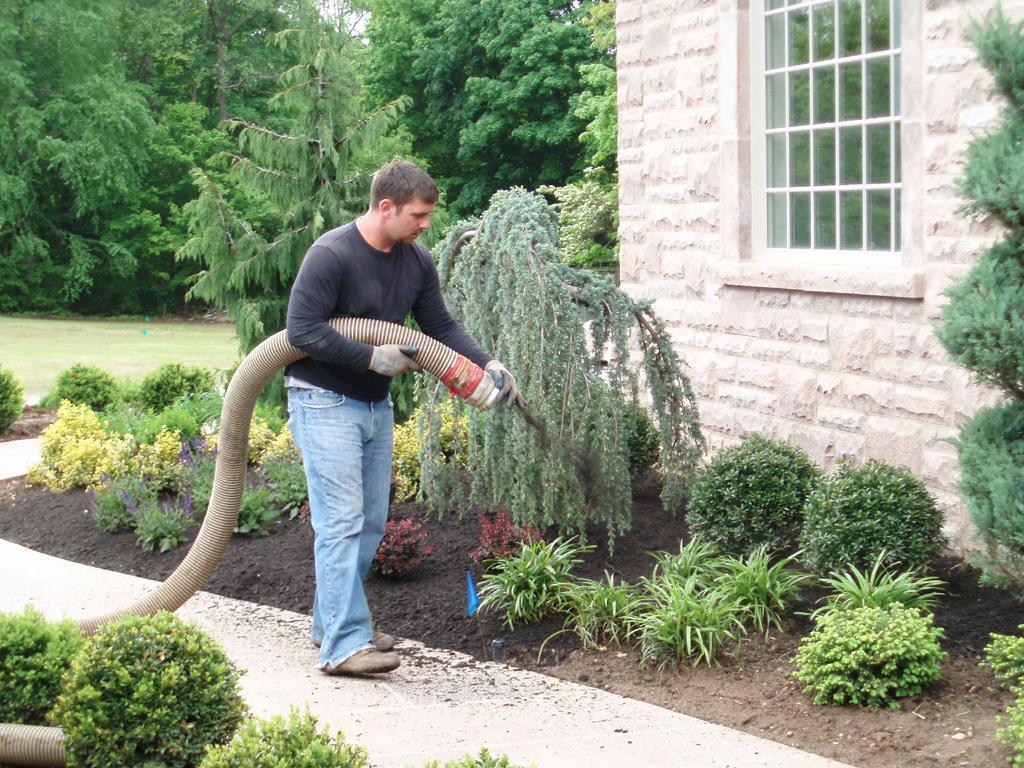 Great Mulch Maintenance, Mulch, Mulch Blown Installation, Mulch Blower, Mulching