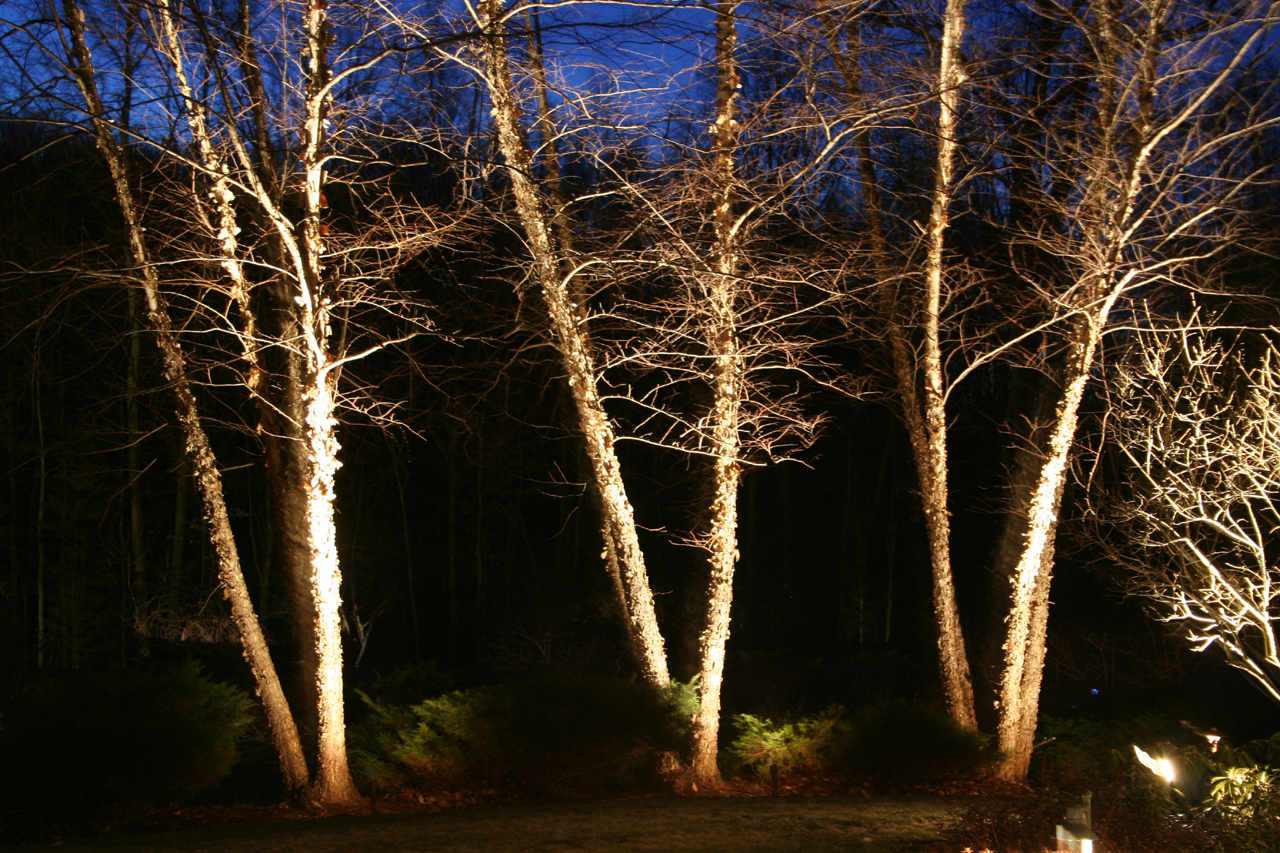 Exterior Lighting, Low Voltage Lighting, Star Lites, Landscape Lighting,  Lanscape Lighting Design